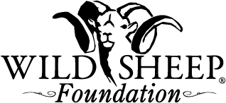 Take Action: Wild Sheep Foundation