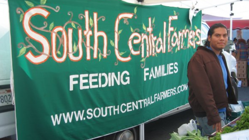 Help to Support South Central Farm