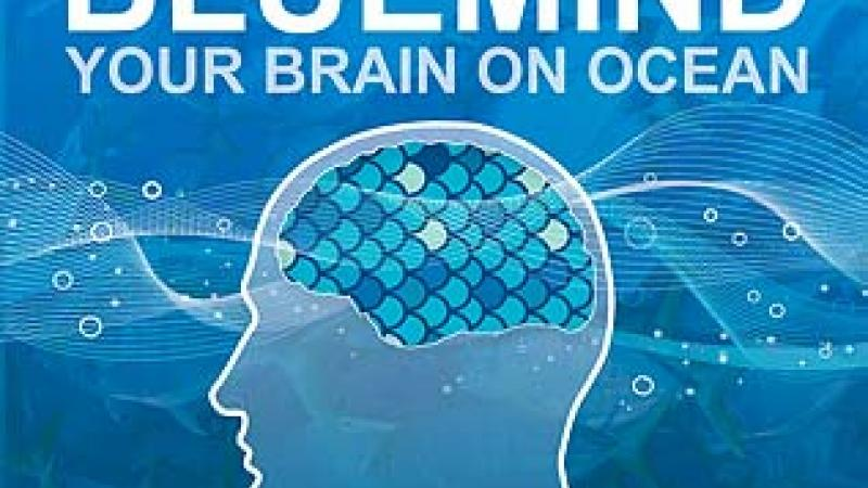 Blue Mind: Does the Ocean Impact Our Brains Neurologically?