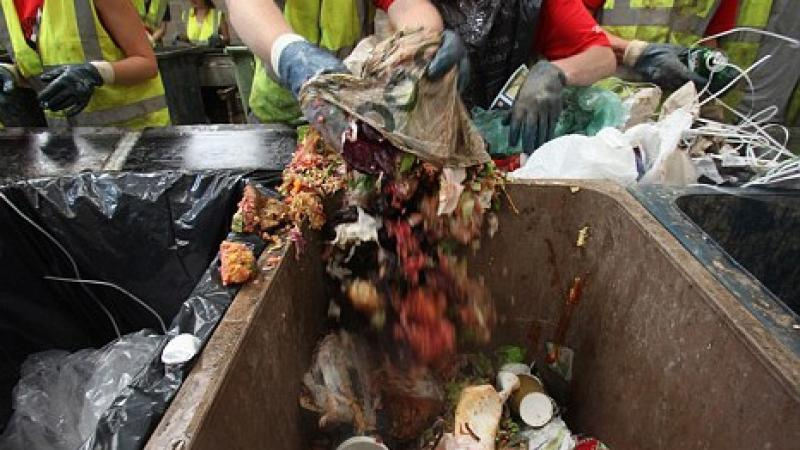 Throwing Away Gorillas: Food Waste
