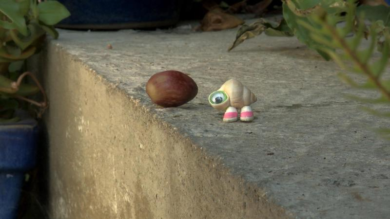 Marcel the Shell with Shoes On, 3